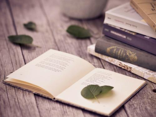nightfall-home-remedies-book-reading