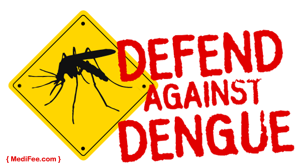 dengue fever and flower pots Dengue fever (df) is an important mosquito-borne viral infectious disease, mostly distributed  tub flower pots and were found to be mixed breeding site for.