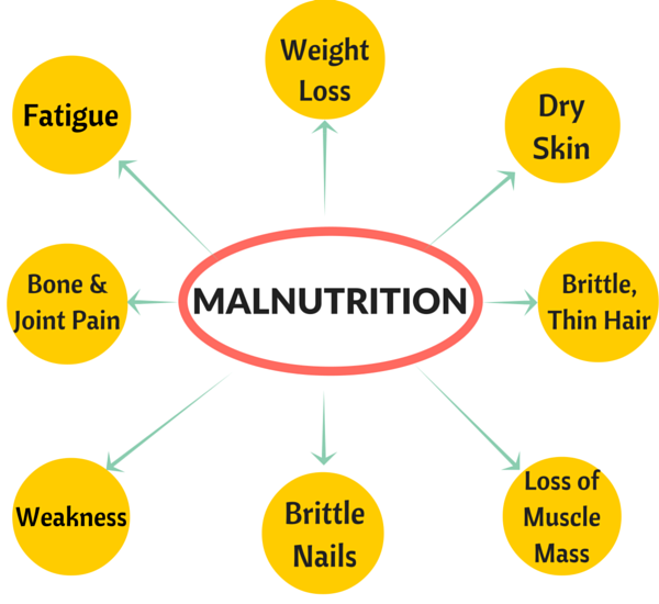 discuss how hunger and malnutrition influence Discusses the nature and measurement of hunger and malnutrition, current levels   documented influences on cognitive development, even in.