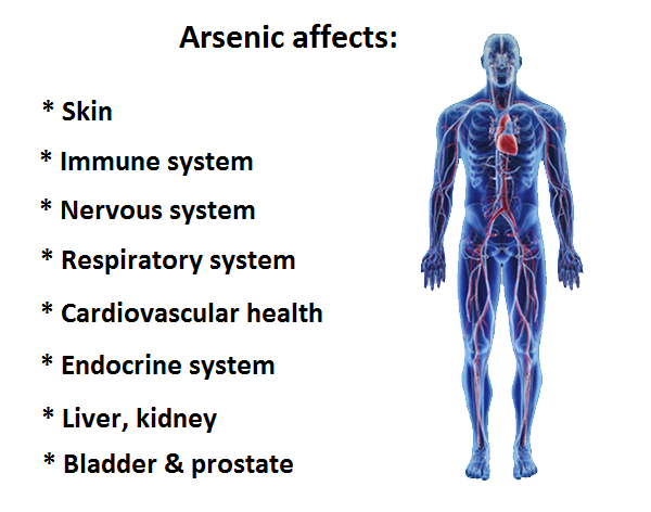 health-hazards-of-arsenic-on-human-body