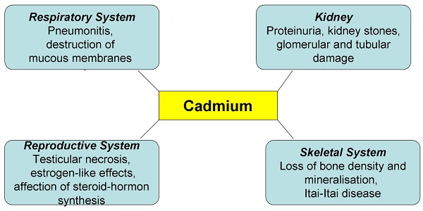 health-hazards-of-cadmium