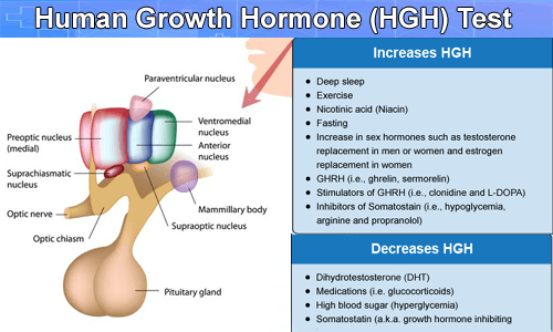 HGH Test from Thyrocare