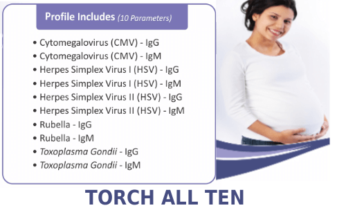 Torch All 10 Test from Thyrocare